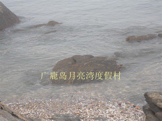 大连广鹿岛月亮湾度假村—58商街店铺